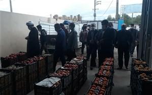 افتتاح وآغاز به کار میدان میوه و تره بار شهرستان لالی