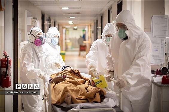 تداوم روند نزولی فوتیهای کرونا؛ طی ۲۴ ساعت گذشته ۳۷۱ بیمار جان باختند