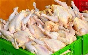 ایجاد هماهنگی با وزارت صمت برای توزیع مرغ در اصناف