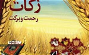 هزینه ۲۶ میلیارد ریالی زکات برای معیشت و سلامت روستاییان خراسان شمالی