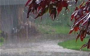 بارشها ۹ درصد افزایش یافت