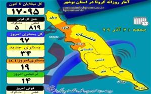 روز بدون فوتی در استان بوشهر