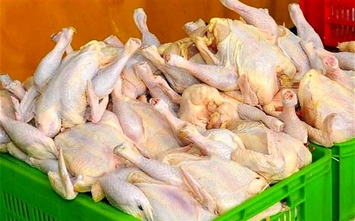 عرضه گوشت مرغ به قیمت 20 هزار و 400 تومان در استان زنجان