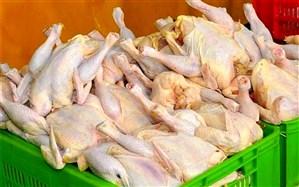 نرخ هر کیلو مرغ ۲۱ هزار تومان