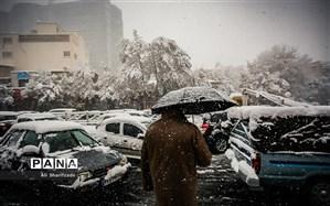 باران، برف و وزش باد شدید در برخی نقاط کشور