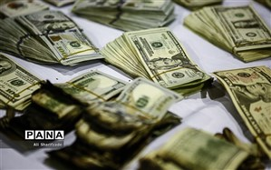 کشف بیش از ۵۳ میلیارد ریال کالا و ارز قاچاق
