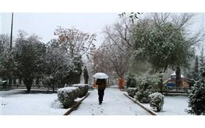 بارش باران و برف از فردا در گیلان آغاز می شود