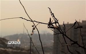 هوای تبریز، ناسالم برای همه گروهها