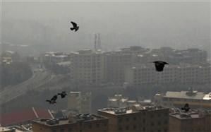 مازوت ایران چند برابر آلودهتر از مازوت کشورهای پیشرفته است