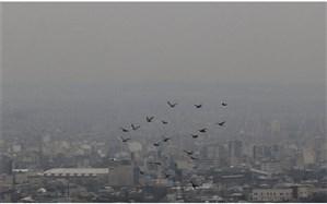 هوای تبریز، ناسالم برای گروههای حساس