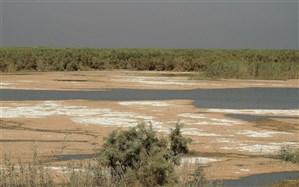 تالابها در خطرنابودی؛ الزامات محیطزیستی روی کاغذ