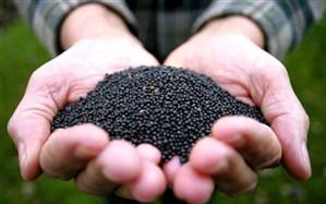 انعقاد اولین قرارداد خرید توافقی کلزا در قالب کشاورزی قراردادی در آذربایجان شرقی