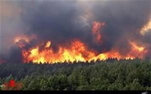باد گرم ۲۴ فقره حریق در مراتع و جنگل های گیلان را رقم زد