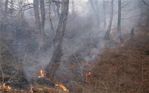 80 درصد آتش سوزیهای اخیر جنگلهای شمال به دلیل خطای انسانی بوده است