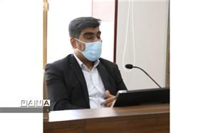 برگزاری ویدئو کنفرانس  رابطین قطبهای شهرستانها و مناطق استان کرمان