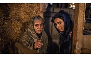 بچه های طوفان، فیلم گل آلود سی و نهمین جشنواره فیلم فجر