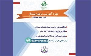 آموزش مجازی مربیان پیشتاز سازمان دانش آموزی در شبکه شاد برگزار می شود
