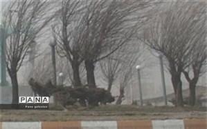 افزایش سرعت وزش باد در گرگان به ۱۲۹ کیلومتر بر ساعت رسید