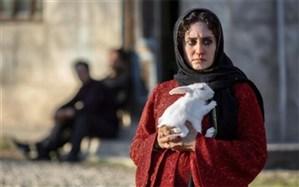«تی تی» با بازی «الناز شاکردوست» آغازگر دهمین دوره جشنواره فیلمهای ایرانیِ استرالیا