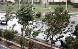 احتمال وزش باد گرم و آتش سوزی، سقوط بهمن و ریزش سنگ  در گیلان