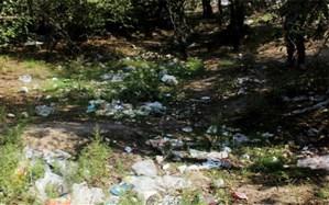 بحران کرونا و ضرورت اصلاح سیستم دفع زباله
