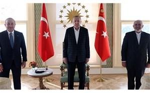 ظریف با رییس جمهور ترکیه دیدار کرد