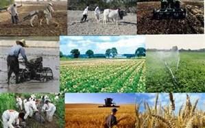 ۸۷ پروژه تولیدی عمرانی در حوزه کشاورزی گیلان به بهره برداری می رسد
