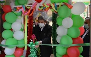 افتتاح همزمان پنج باشگاه پیشکسوتان آموزش و پرورش استثنایی در بوشهر