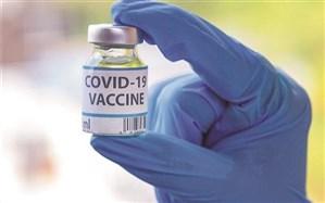 دومین محموله واکسن اسپوتنیک، فردا به ایران ارسال میشود