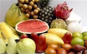 تعادل و تنوع برنامه غذایی از بایدهای دوران کرونا