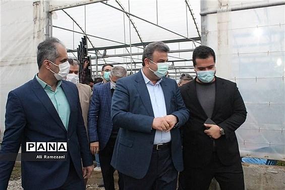 افتتاح ۳۱ گلخانه روستای خرماکلای در قائمشهر