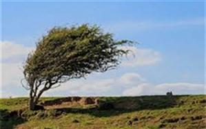 وزش باد شدید تا خیلی شدید در ۲۴ استان