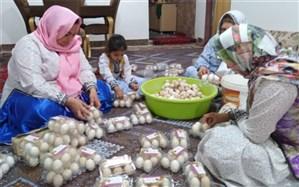 ١١٠ صندوق اشتغال زنان روستایی و عشایری در سیستان و بلوچستان فعال است
