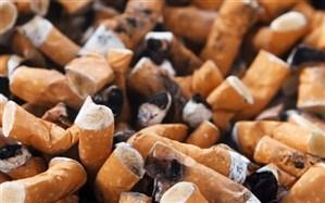 برگزاری وبینار آموزشی با هدف آگاهی از مضرات سیگار