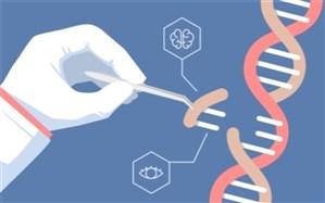 3400 پرونده مشاوره ژنتیک برای کاهش بیماریهای مادرزادی در زاهدان تشکیل شد