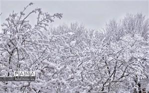 پیشبینی سازمان هواشناسی از تداوم بارش برف و باران تا 5 روز آینده