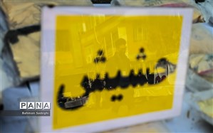 کشف بیش از 370 کیلو حشیش در شیراز