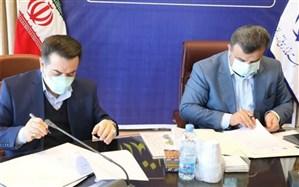 شهرک گلخانهای و پرورش دام در مازندران احداث میشود