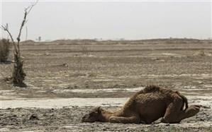 کاهش 96 درصدی بارندگی در سیستان و بلوچستان چه پیامدهایی دارد؟