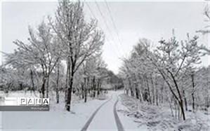 بارش اولین برف زمستانی در نایین+ فیلم