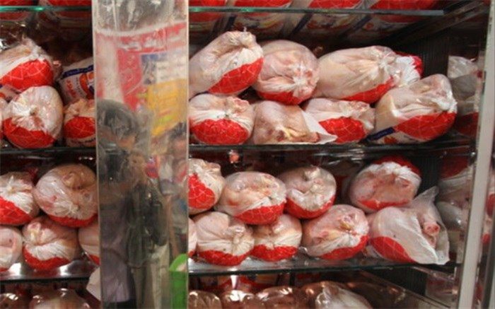 نبود نظارت بر توزیع مرغ منجر به کمبود کاذب میشود
