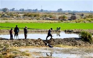 بیش از ۵۶ میلیون مترمکعب آب تحویل کشاورزان سیستانی شد