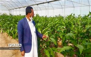صادرات ۷.۸ میلیون تن محصولات کشاورزی از ابتدای سال