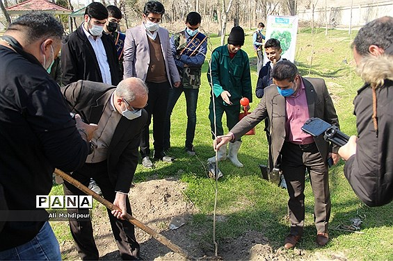 آیین درختکاری در آموزش و پرورش ناحیه یک شهرری
