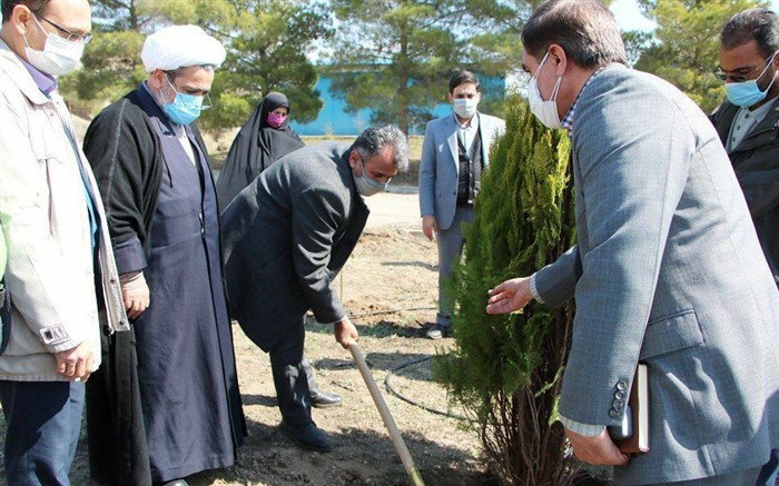 کاشت 1 هزار اصله نهال در اردوگاه دانش آموزی شهید بابایی قزوین