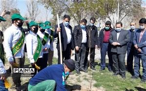 کاشت نهال توسط شهرداران  مدارس منطقه ١٩