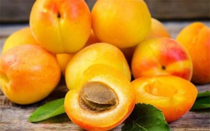برای کاهش فشار خون زردآلو بخورید