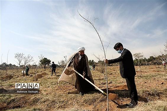 کاشت 1000 اصله نهال در روز درختکاری