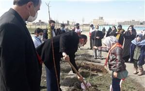 غرس نهال توسط اعضای پیشتازان دبستان دخترانه مهرنیار اردبیل