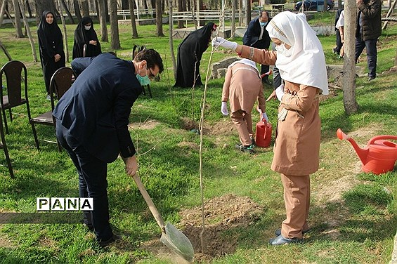 کاشت چند اصله نهال از سوی سازمان دانشآموزی جمهوری اسلامی